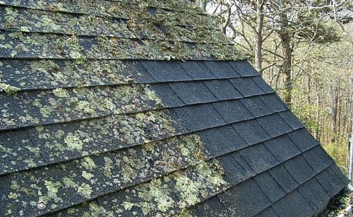 roof cleaning lichen